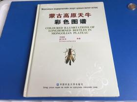 蒙古高原天牛彩色图谱