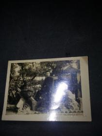 1954年无锡寄畅园老照片(尺寸9*6.5CM)