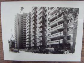 老照片:【※ 1982年,北京市中科院中关村小区新建成的住宅楼 ※】