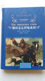 经典译林:钢铁是怎样炼成的 [苏]尼·奥斯特洛夫斯基 著 译林出版社 9787544711289 精装本