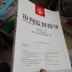 中国审判指导丛书:审判监督指导(2013.2)(总第44辑)