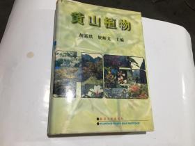 黄山植物(16开精装)