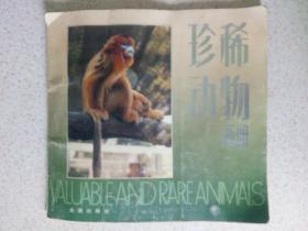 珍稀动物画册 1架