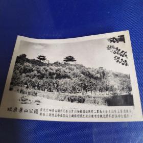 北京景山公园