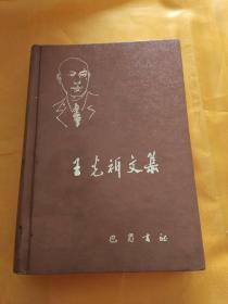 王光祈文集 (音乐卷,精装)