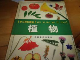 学习百科图鉴 植物