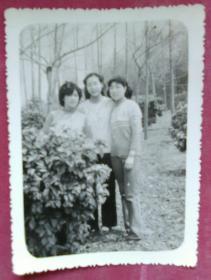 三位美女合影照片