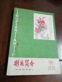 影片简介 5