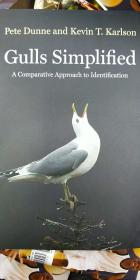 Gulls Simplified A comparative approach to identification 北美鸥类识别指南 Birds Guide 鸟类图鉴