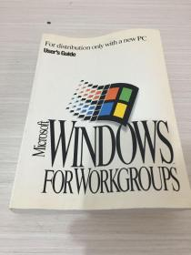 WINDOWS FORWORKGROUPS