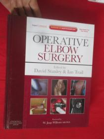 Operative Elbow Surgery: Expert Consult: O...          (大16开,硬精装)   【详见图】