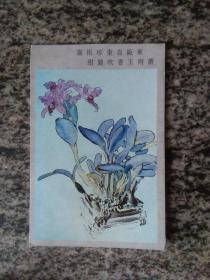 明信片 背销普23 15分