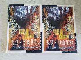 大卫·考波菲尔:大卫·科波菲尔(上下册)【实物拍图 品相自鉴 2册合售】
