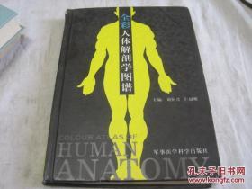 全彩人体解剖学图谱