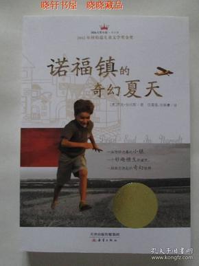 诺福镇的奇幻夏天 (国际大奖小说)