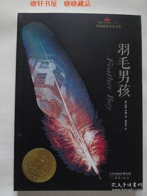 羽毛男孩 (国际大奖小说)