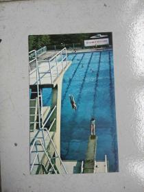 民信片:游泳池
