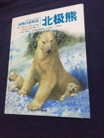 动物百科图鉴:全球同步珍藏版.北极熊(硬精装)