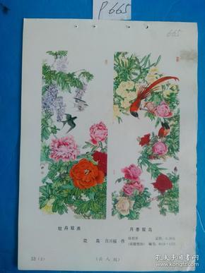 宣传画、年画(年画缩样)牡丹双燕 月季双鸟
