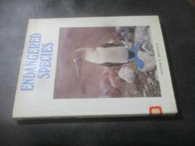 Endangered Species  濒危物种  英文原版8开精装