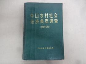 中国农村社会经济典型调查 (1985年)