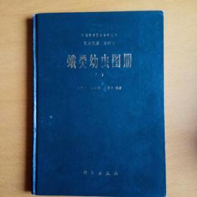 昆虫图册第四号:蛾类幼虫图册(一)【缺次扉页】