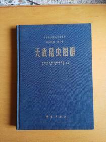 昆虫图册第三号:天敌昆虫图册【缺次扉页】