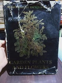 《GARDEN PLANTS AND FLOWERS》英文原版铜版彩印