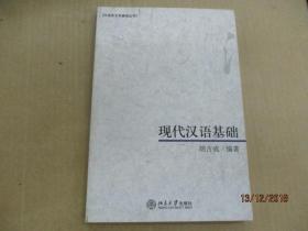 现代汉语基础:汉语言文学基础丛书