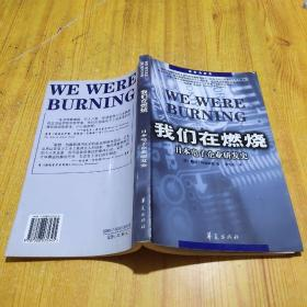 我们在燃烧:日本电子企业研发史
