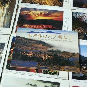 元阳梯田风光明信片(10张)