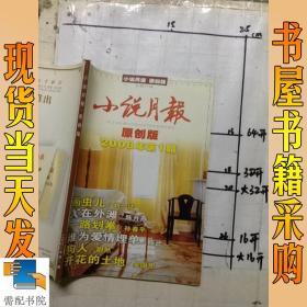 小说月报     原创版    2008       1