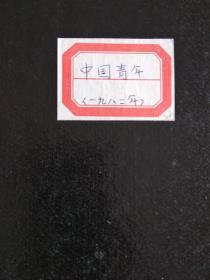 中国青年杂志一九八二年合订本