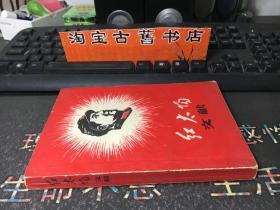 红太阳文献(第二册 )