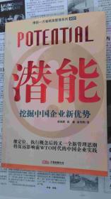潜能-挖掘中国企业新优势