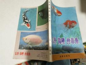 金鱼·锦鲤·热带鱼