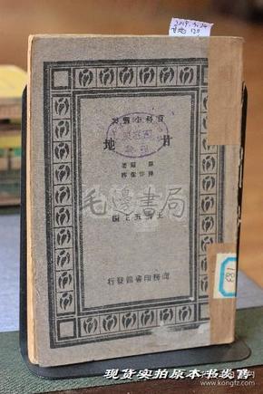 甘地 百科小丛书