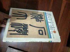 书的宇宙 22 清代诸家2(日文原版精装画册)