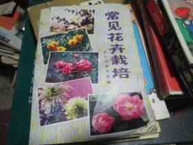 常见花卉栽培