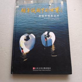 德军镜头下的世界~袁德军摄影艺术(含VCD光盘)(精装本)