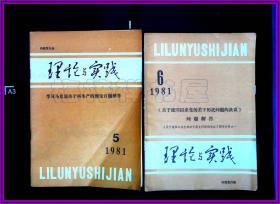 理论与实践 1981 5 6