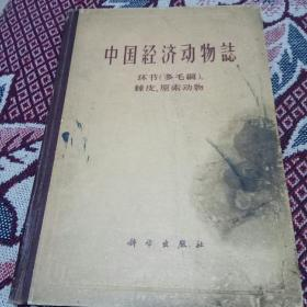 中国经济动物志(环节  多毛纲  棘皮、原索动物)