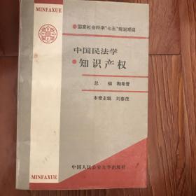 中國民法學.知識產權