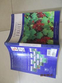 GROWING FRUIT 生长果实   详情如图  品自定 16开  13-1