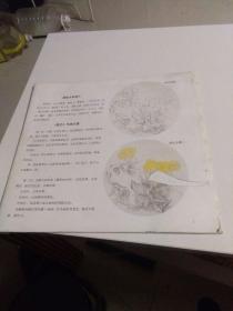 扇面工笔花鸟技法 无皮 第一页有个窟窿 如图