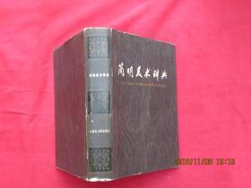 简明美术辞典(精装)