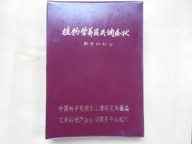 【植物营养及失调症状,彩色幻灯片,95张】中科院南京土壤研究所