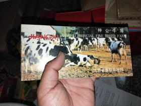 种公牛薄  江西省畜牧良种场