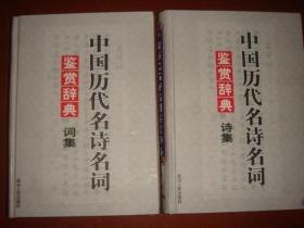 《中国历代名诗名词鉴赏辞典》词集 诗集 全两册 大16开 延边人民出版社 私藏 品佳 书品如图