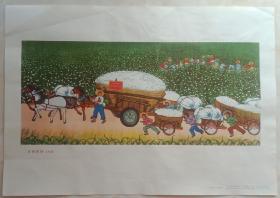 70年代经典年画系列------户县农民歌-----《喜摘新棉》-----8开--------虒人荣誉珍藏